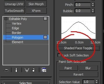 Switching to Soft Selection in 3Ds Max: the Mesh Displays as a Wireframe